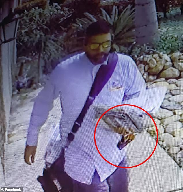 Inspecting the footage from multiple angles, Galindo spotted the postman carrying a canister in his hand, believed to be pepper-spray